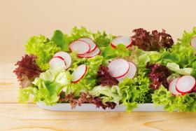 Dressing cu Ierburi pentru Salate cu Iaurt BIO - LEBENSBAUM - 24g (3x8g)